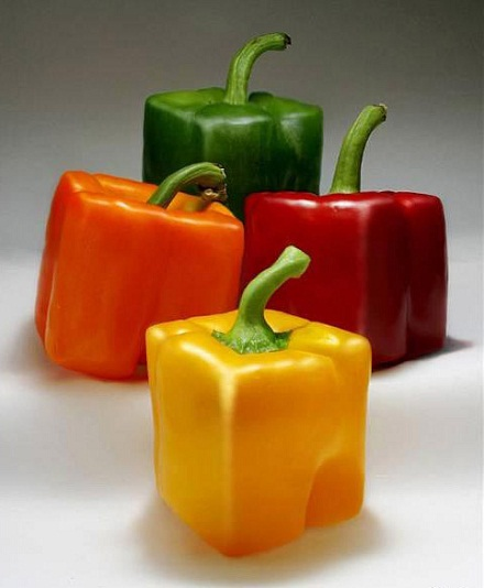 Квадратные овощи